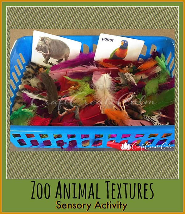 Sensory Activity Zoo : Exploring Animal Textures