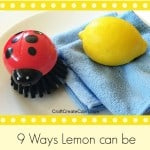 How to use Lemons to Clean your Home