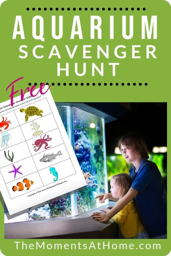 free aquarium scavenger hunt worksheet preview and two boys looking at display