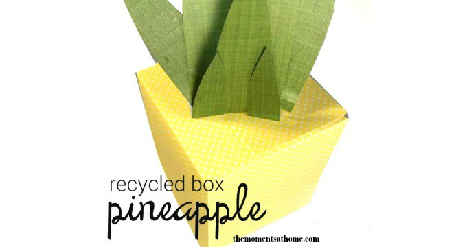 Tissue Box Pineapple Craft Table Decoration