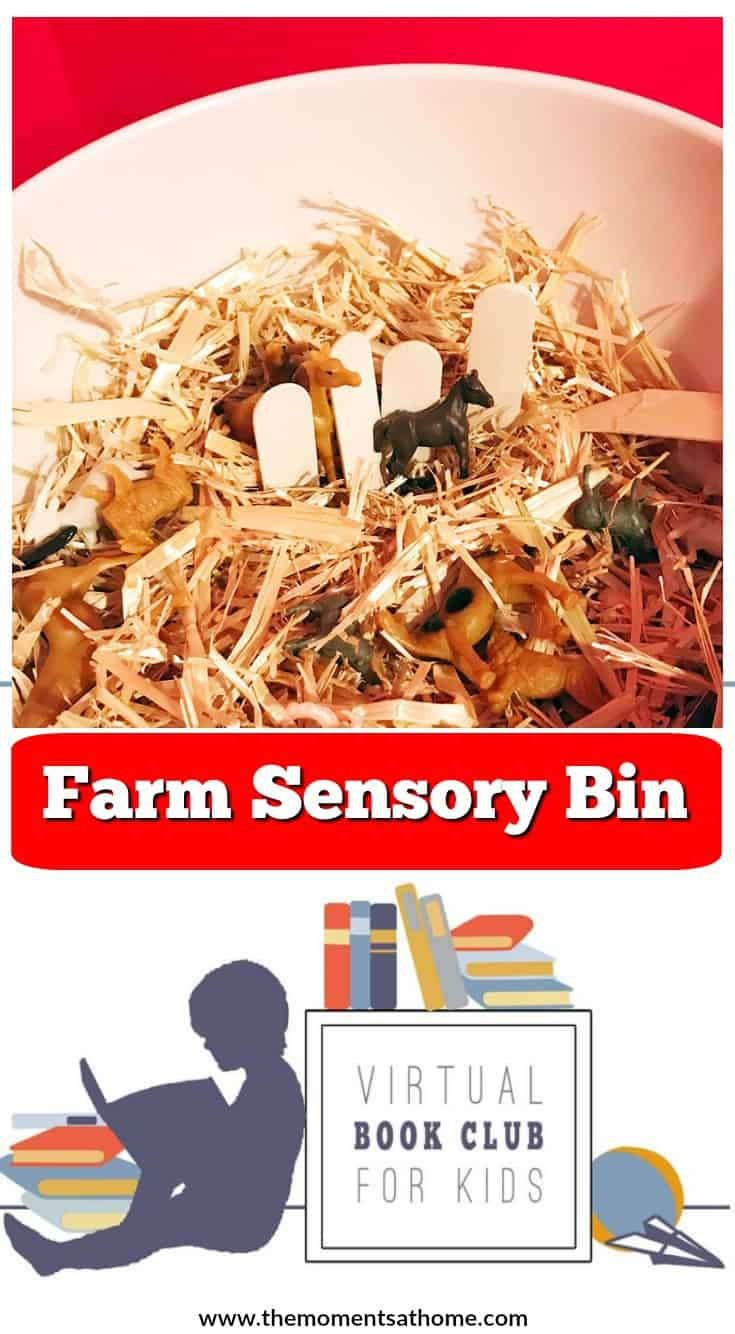 Farm sensory bin for kids. Farm small play activity. Virtual book club for kids activies.