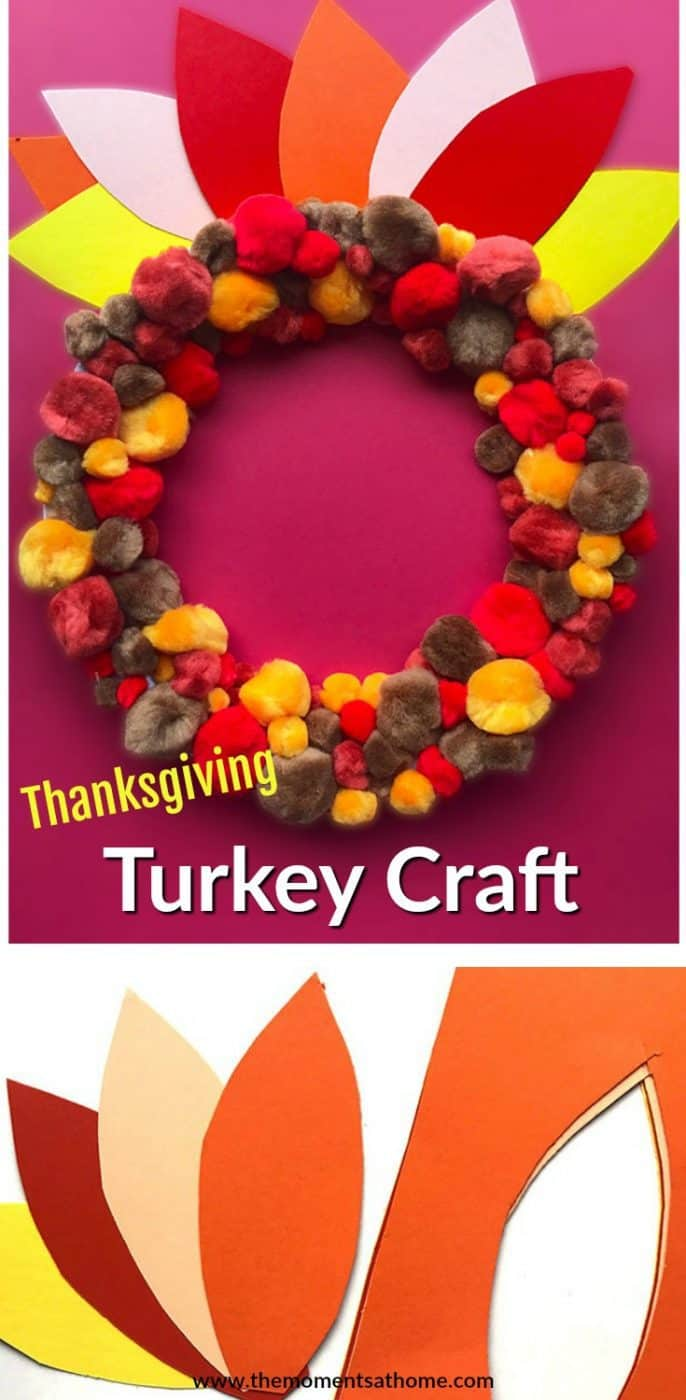 Cute twist on the traditional turkey paper plate craft. This can be done by adults too!