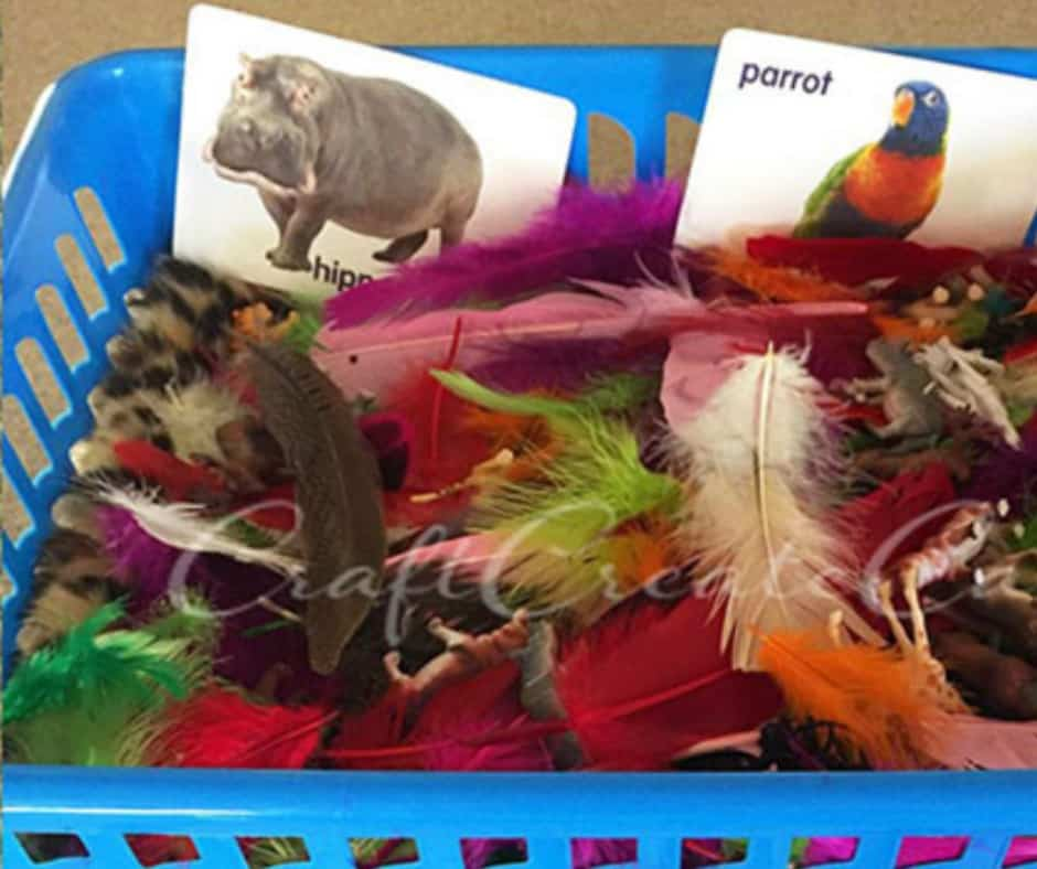 toddler sensory bin with feathers and animal flash cards