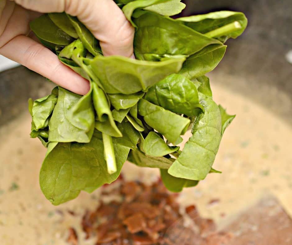 hand adding spinach to creamy garlic sauce in a skillet