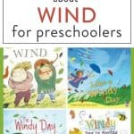 picture of wind books