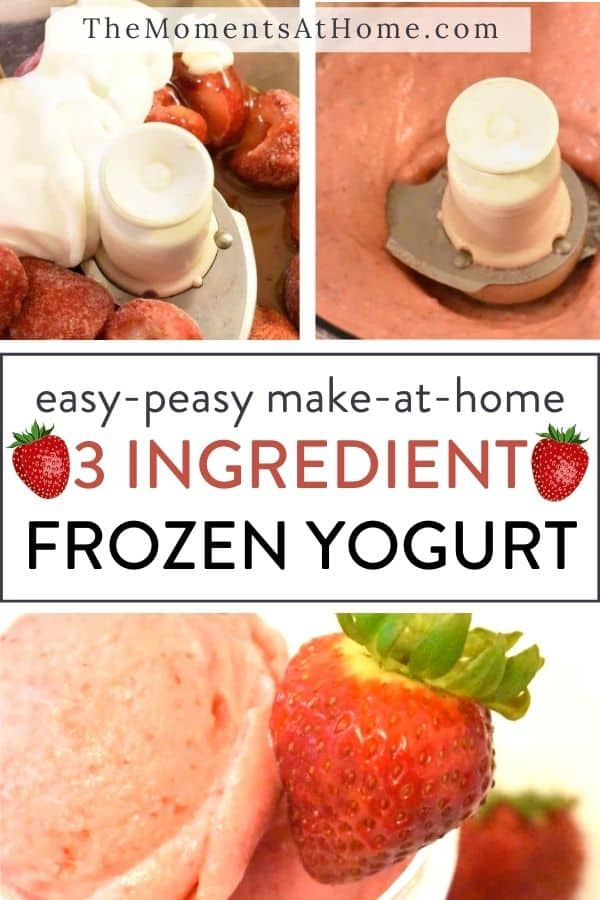 step by step pics for making three ingredient frozen yogurt